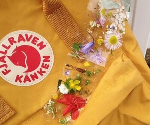 yellow, flowers, and tumblr image