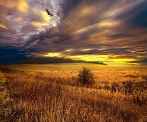 autumn, clouds, and nature image