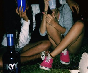 alcohol, girls, and vodka image