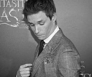 aesthetic, b&w, and newt scamander image