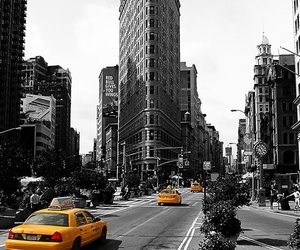new york, yellow, and taxis image
