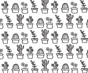 aesthetic, background, and cactus image