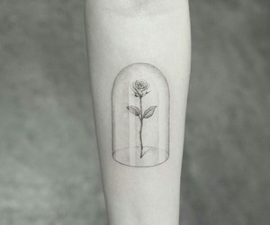 tattoo, book, and rose image