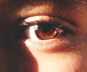 brown, eyes, and aesthetic image