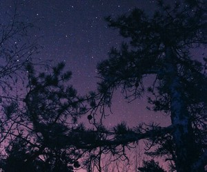 night, stars, and nature image