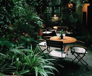 cafe, green, and nature image