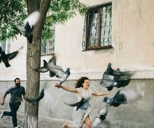 love, birds, and couple image