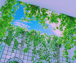 aesthetic, green+, and blue image
