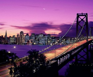 california, bridge, and light image