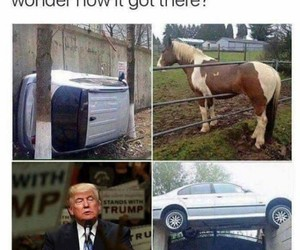 funny, trump, and car image