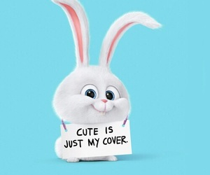 bunny, cartoons, and quotes image
