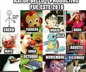 2016, divertido, and funny image