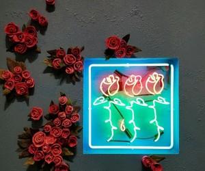 rose and neon image