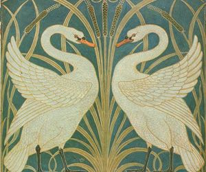Swan and art image