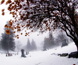 graveyard, snow, and winter image