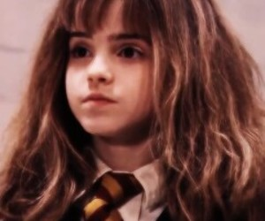 harry potter, harry potter icons, and hermione granger image