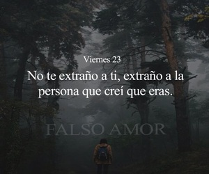frases, quotes, and te extraño image