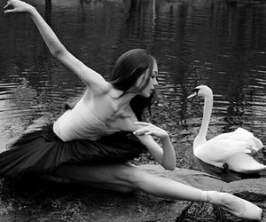 ballerina, ballet, and swan lake image