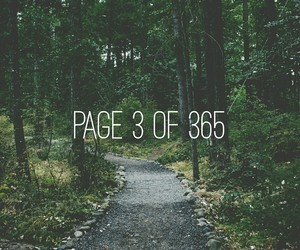 forest, grunge, and happy new year image