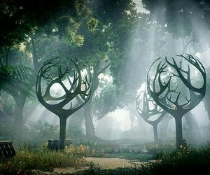 forest, tree, and magic world image