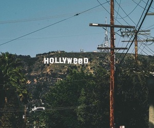 hollywood, hollyweed, and weed image