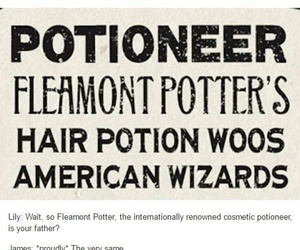 funny, james potter, and harry potter image