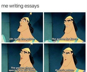 funny, lol, and essay image