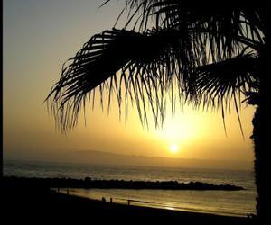 beach, por do sol, and praia image