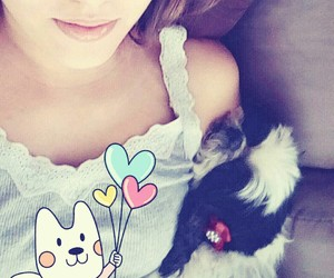 pet, dog, and cute image