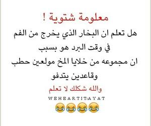 تحشيش العراق, بنات شباب, and هل تعلم شتاء image