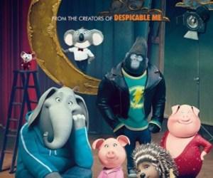 animals, illumination, and movie image