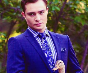 chuck bass, gossip girl, and duck image