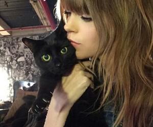 icon, black cat, and cat image