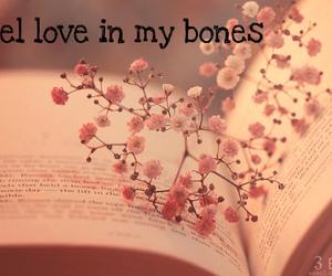 bones, book, and feeling image