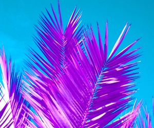 bright, neon, and island life image