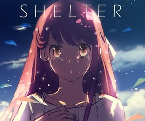 shelter and rin image