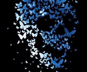 butterfly, art, and skull image