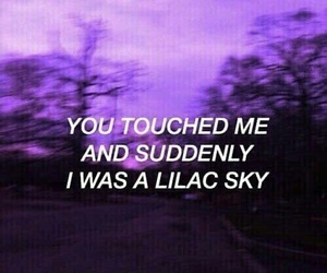 colors, halsey, and purple image