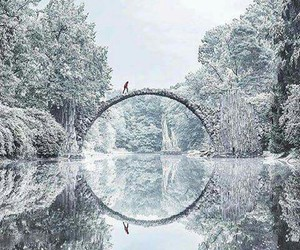 nature, autumn, and bridge image