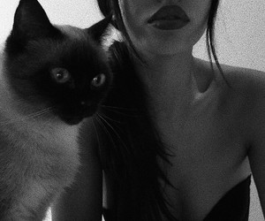 cat, girl, and cindy kimberly image