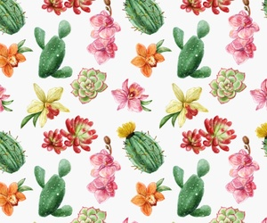 background, cacti, and floral image