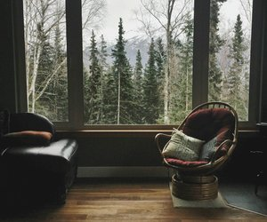 cozy, vintage, and nature image