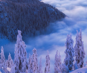 canada, fog, and clouds image