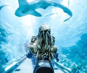 girl, blue, and aquarium image