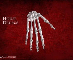 game of thrones, house grejoy, and house drumm image