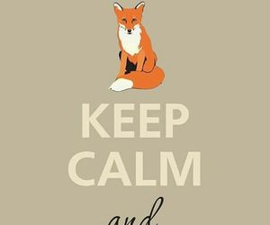 fox, keep calm, and love image