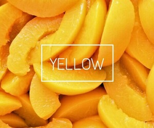 amarillo, tumblr, and yellow image