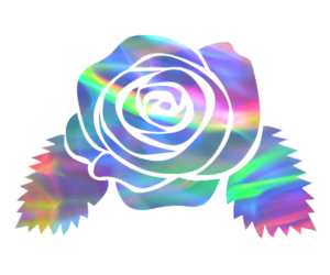 aesthetic, png, and flower image