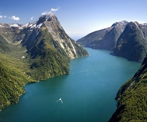 amazing, nature, and new zealand image
