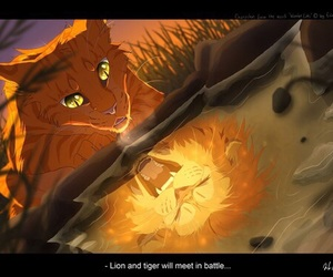 warrior cats and firestar image